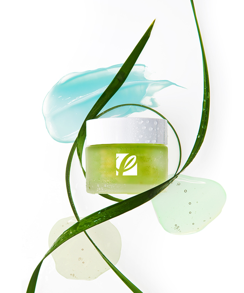 Naturally Inspired Private Label Skincare Image featuring skincare jar and seaweed ingredients