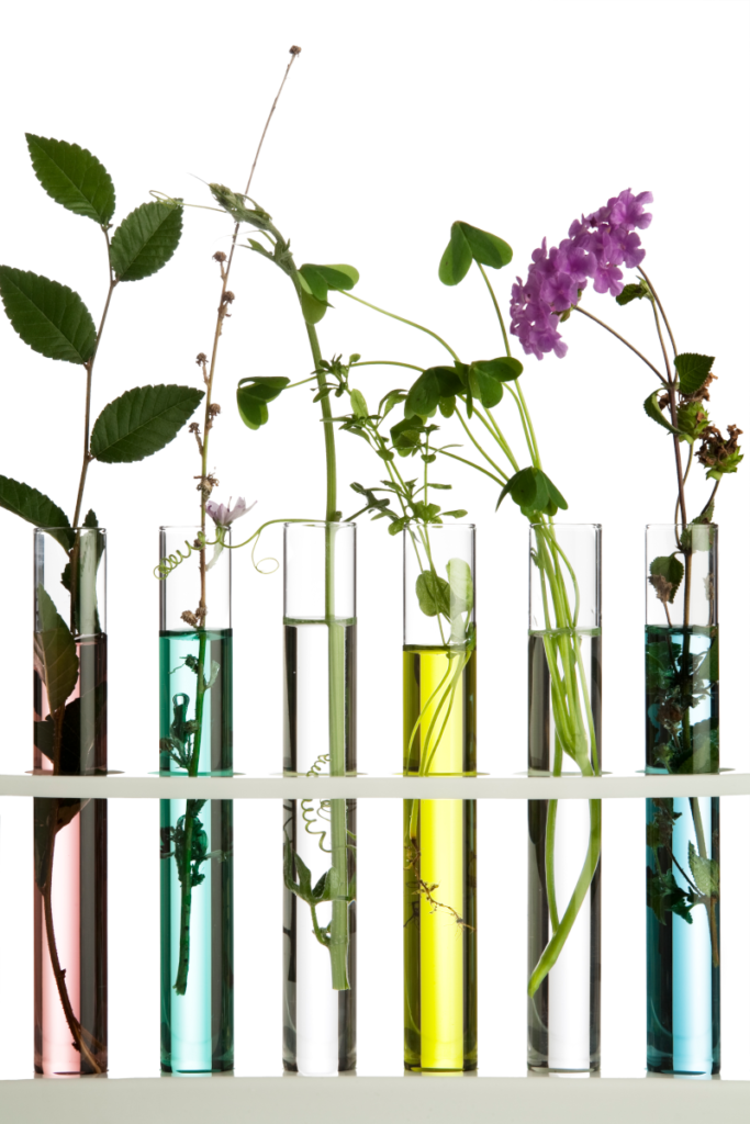 Cosmetic Solutions Client Success section image features a row of test tubes with private label skincare formulas and botanicals inside each test tube.